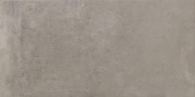Passionis Grey